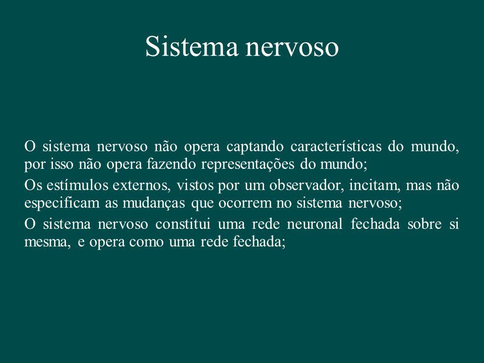 Sistema nervoso O sistema nervoso não opera captando características do mundo, por isso não opera fazendo representações do mundo;