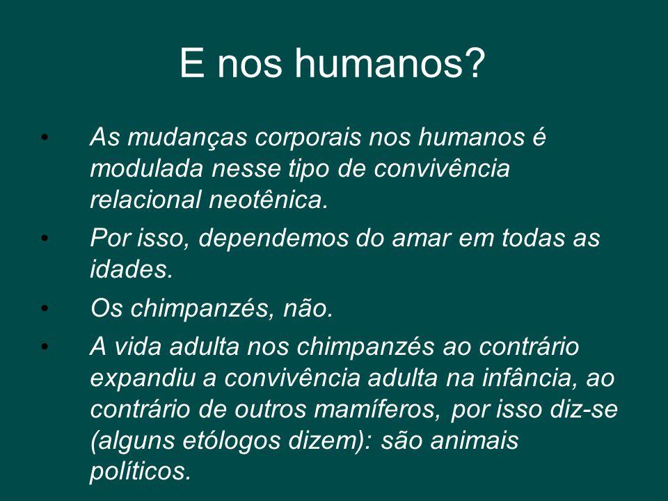 E nos humanos As mudanças corporais nos humanos é modulada nesse tipo de convivência relacional neotênica.