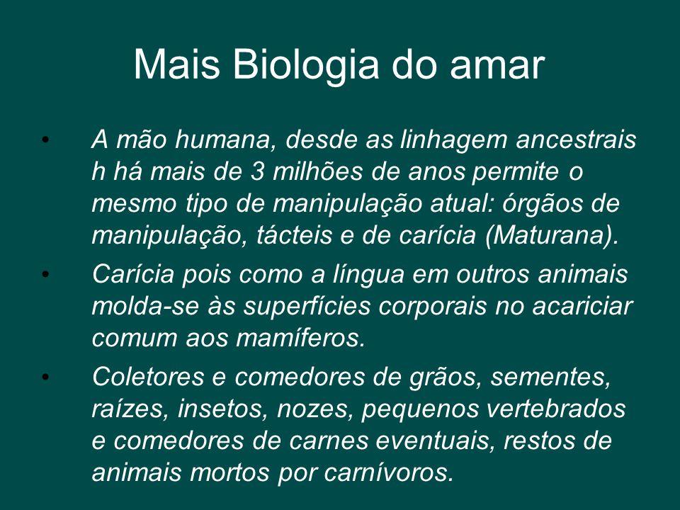 Mais Biologia do amar