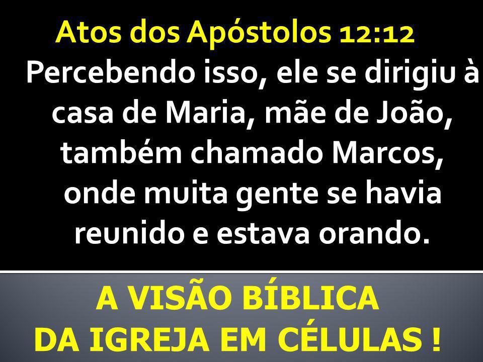 Atos dos Apóstolos 12:12