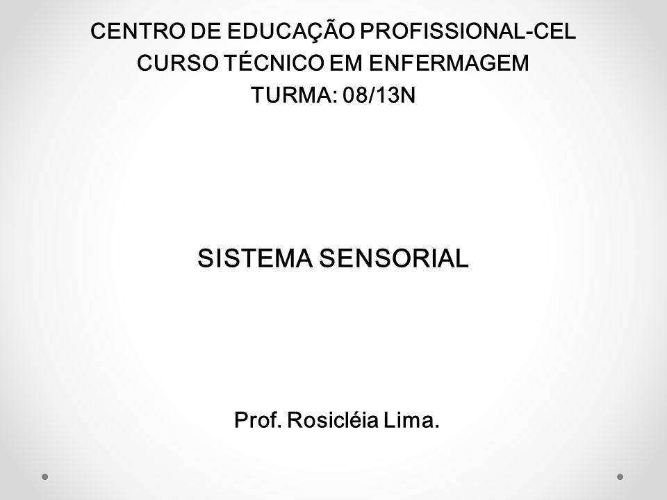 SISTEMA SENSORIAL CENTRO DE EDUCAÇÃO PROFISSIONAL-CEL