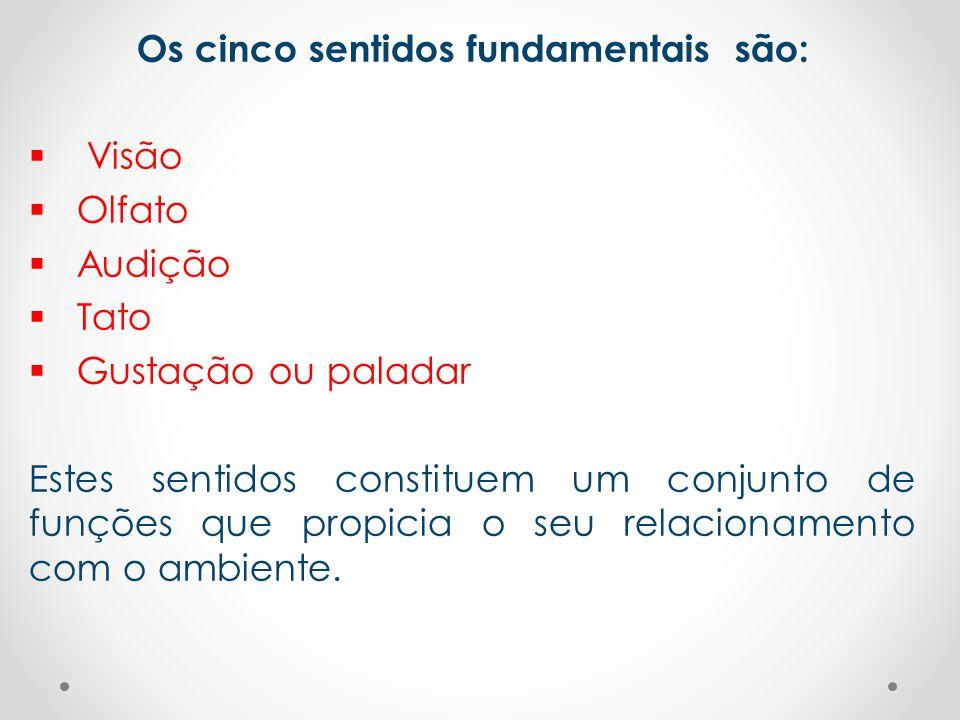Os cinco sentidos fundamentais são: