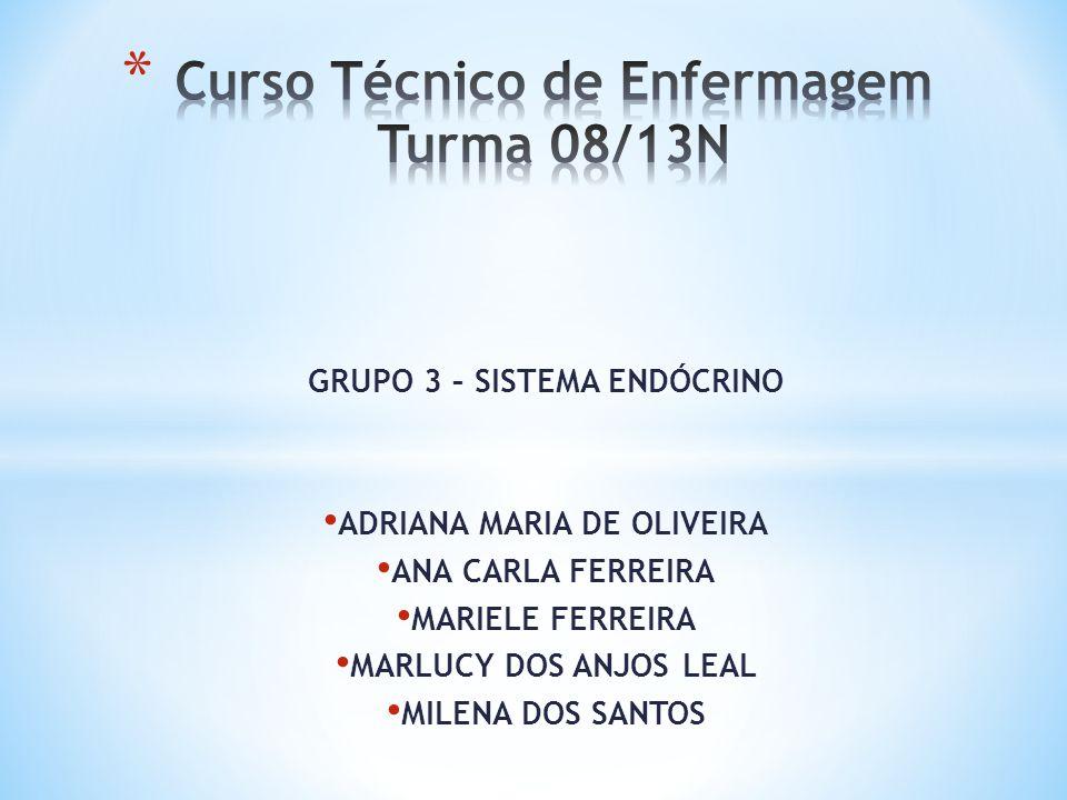 Curso Técnico de Enfermagem Turma 08/13N