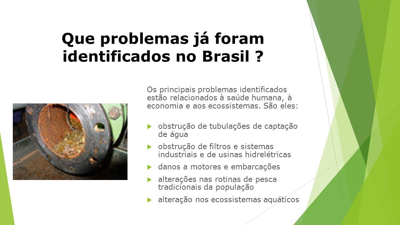 Que problemas já foram identificados no Brasil
