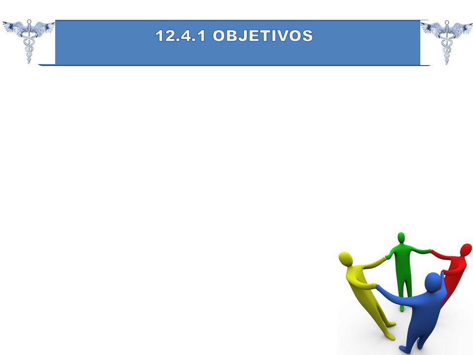 12.4.1 OBJETIVOS