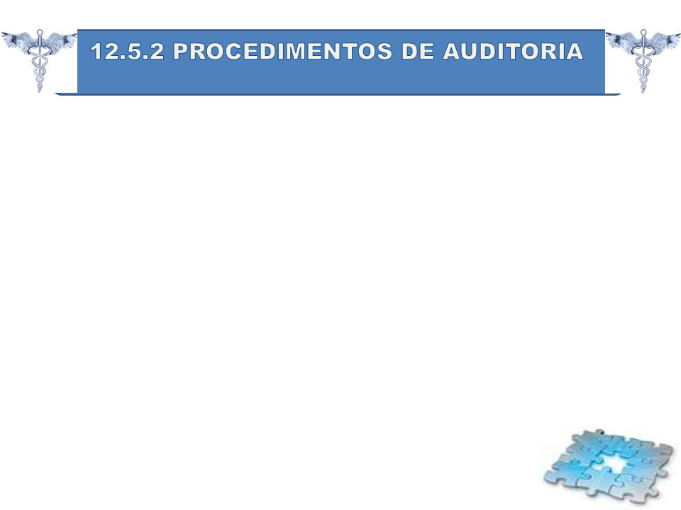 12.5.2 PROCEDIMENTOS DE AUDITORIA