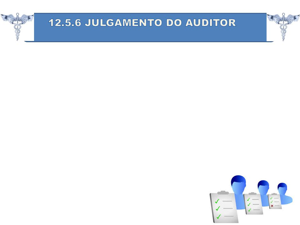 12.5.6 JULGAMENTO DO AUDITOR