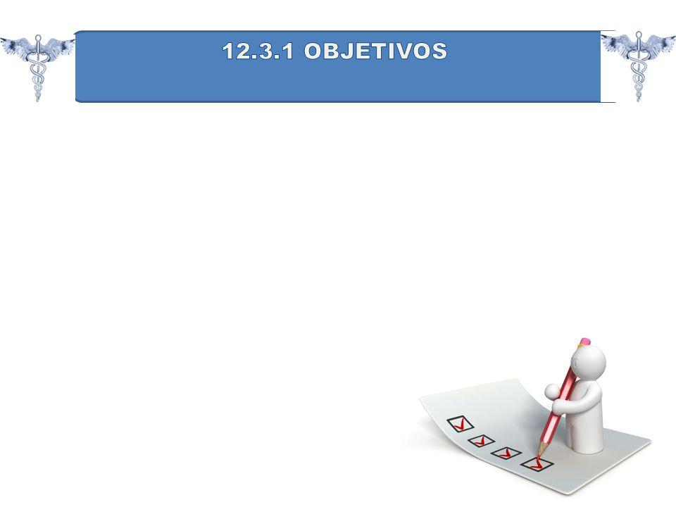 12.3.1 OBJETIVOS