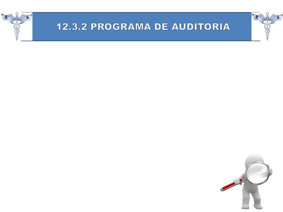 12.3.2 PROGRAMA DE AUDITORIA