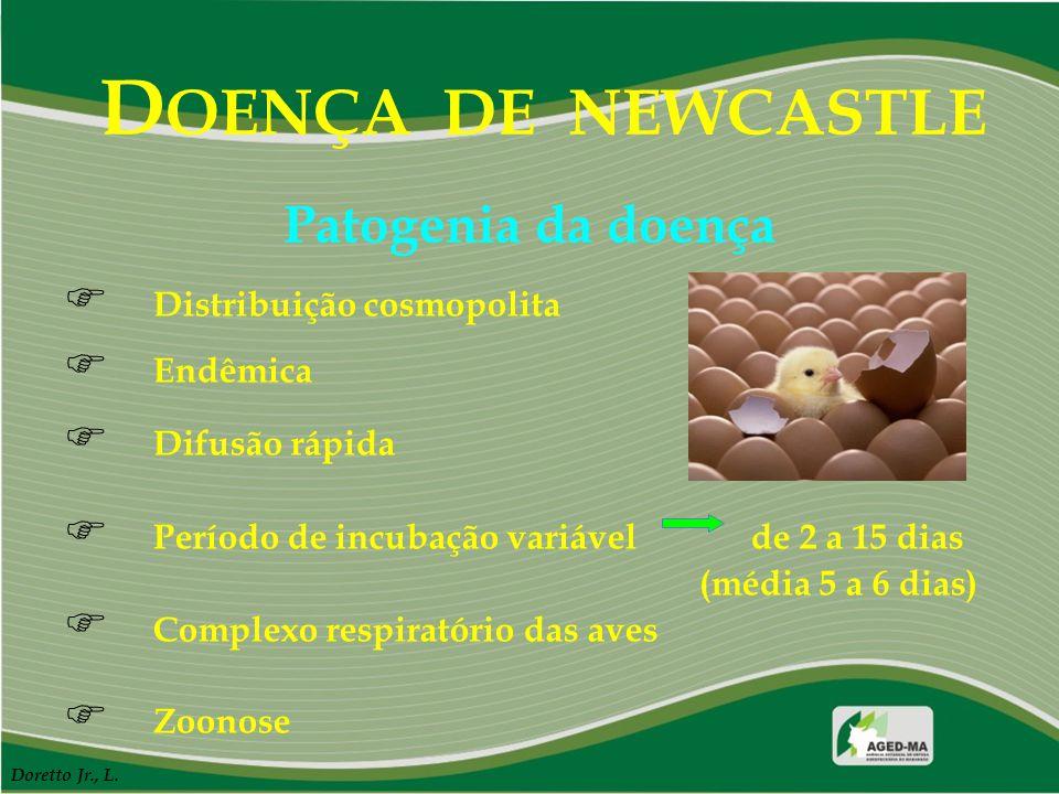 DOENÇA DE NEWCASTLE Patogenia da doença Distribuição cosmopolita