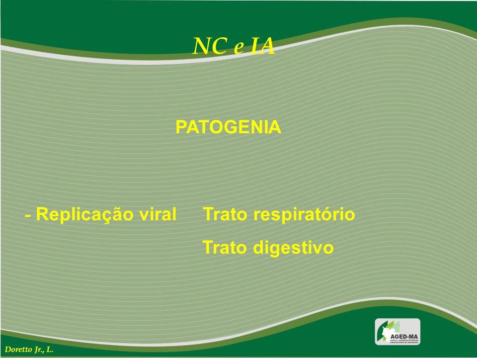 NC e IA PATOGENIA - Replicação viral Trato respiratório