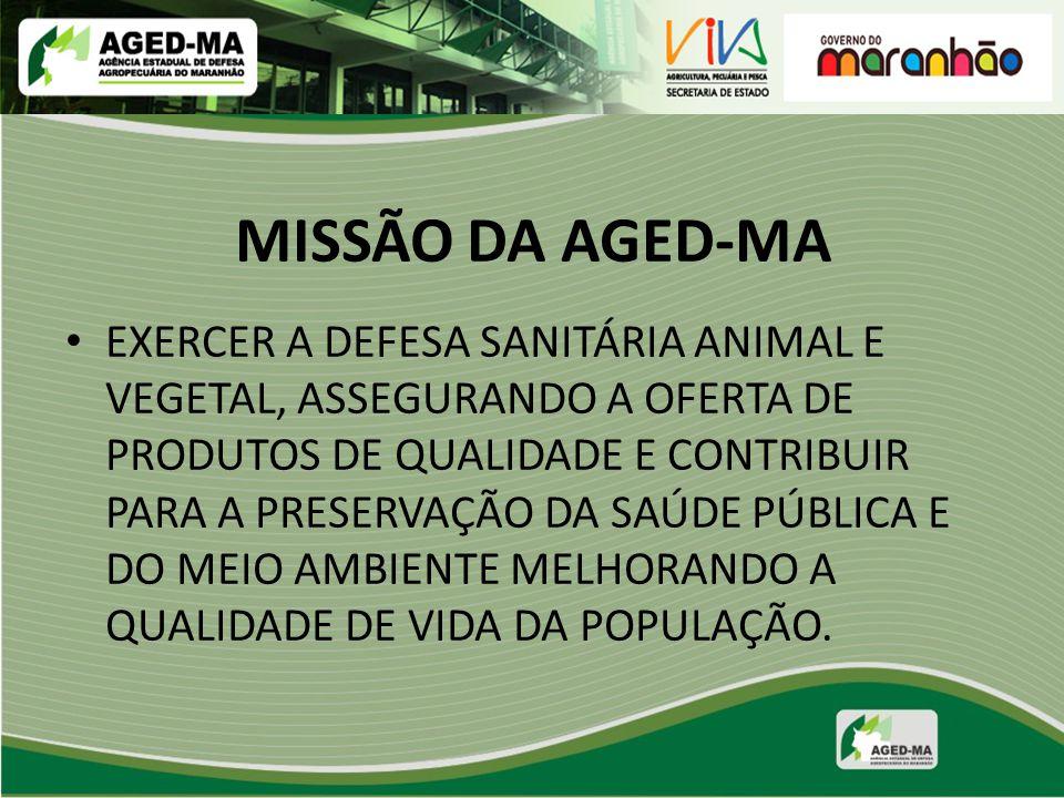 MISSÃO DA AGED-MA