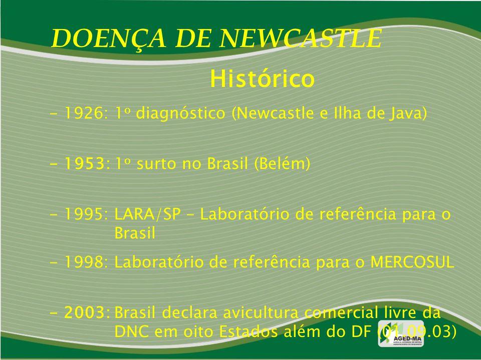 DOENÇA DE NEWCASTLE Histórico