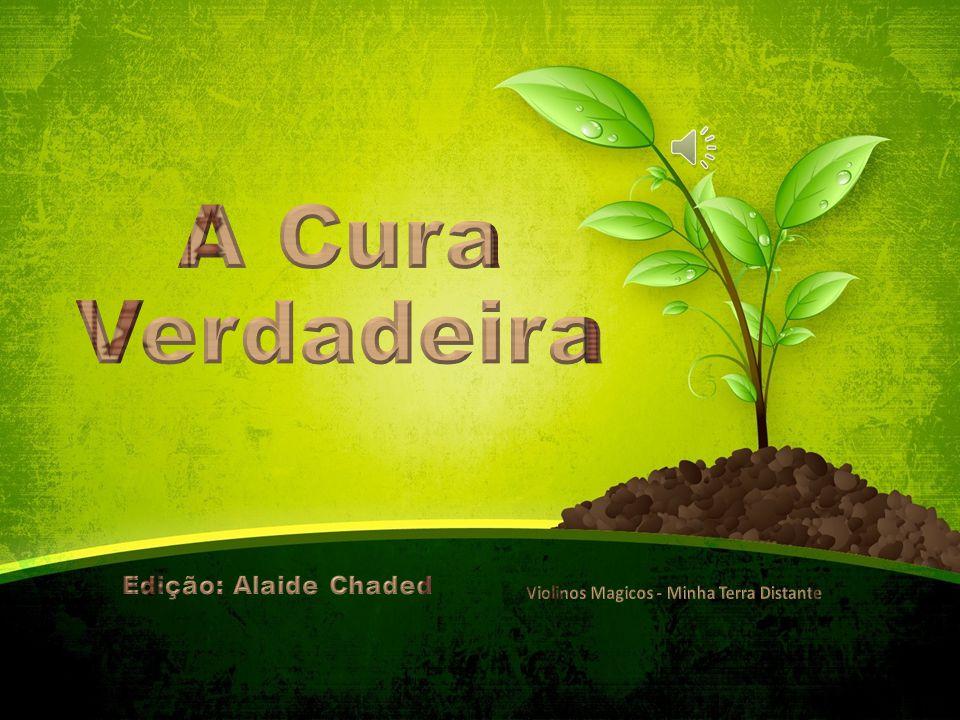 A Cura Verdadeira Edição: Alaide Chaded