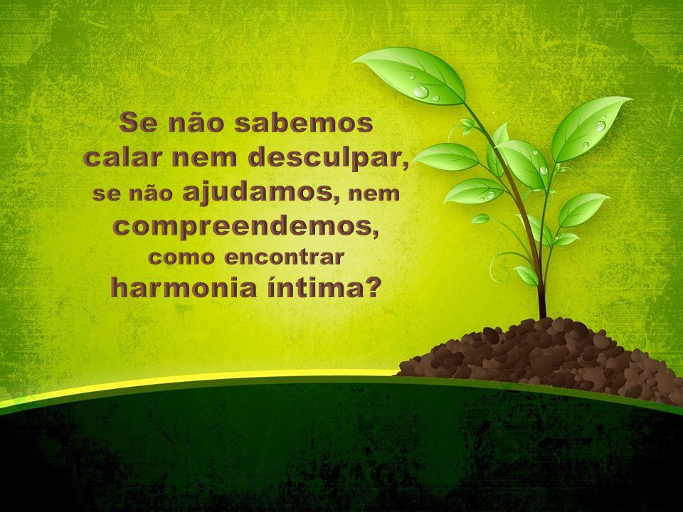 Se não sabemos calar nem desculpar, se não ajudamos, nem compreendemos, como encontrar harmonia íntima