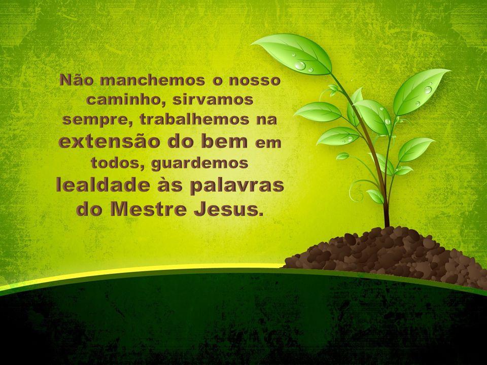 Não manchemos o nosso caminho, sirvamos sempre, trabalhemos na extensão do bem em todos, guardemos lealdade às palavras do Mestre Jesus.