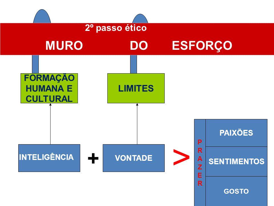 > + ESFORÇO MURO DO 2º passo ético LIMITES FORMAÇÃO HUMANA E