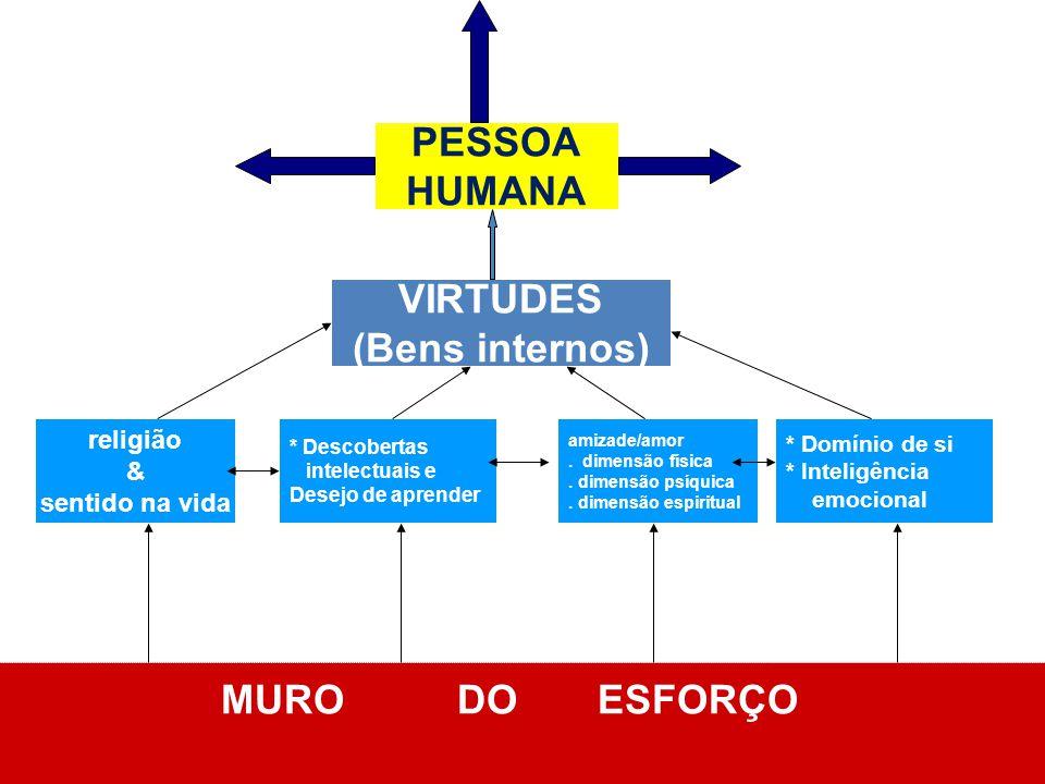 PESSOA HUMANA VIRTUDES (Bens internos) MURO DO ESFORÇO