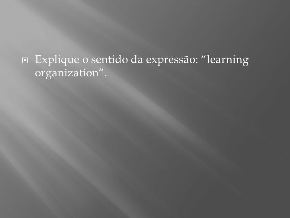 Explique o sentido da expressão: learning organization .