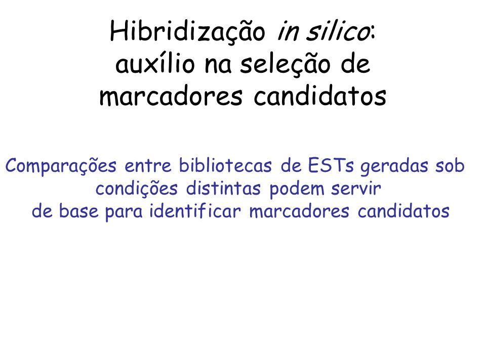 Hibridização in silico: auxílio na seleção de marcadores candidatos