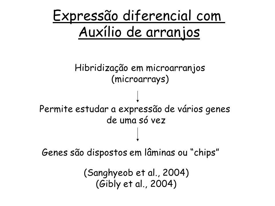 Expressão diferencial com Auxílio de arranjos