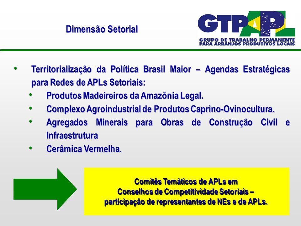 Dimensão Setorial Territorialização da Política Brasil Maior – Agendas Estratégicas para Redes de APLs Setoriais: