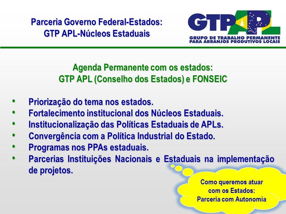 Parceria Governo Federal-Estados: GTP APL-Núcleos Estaduais