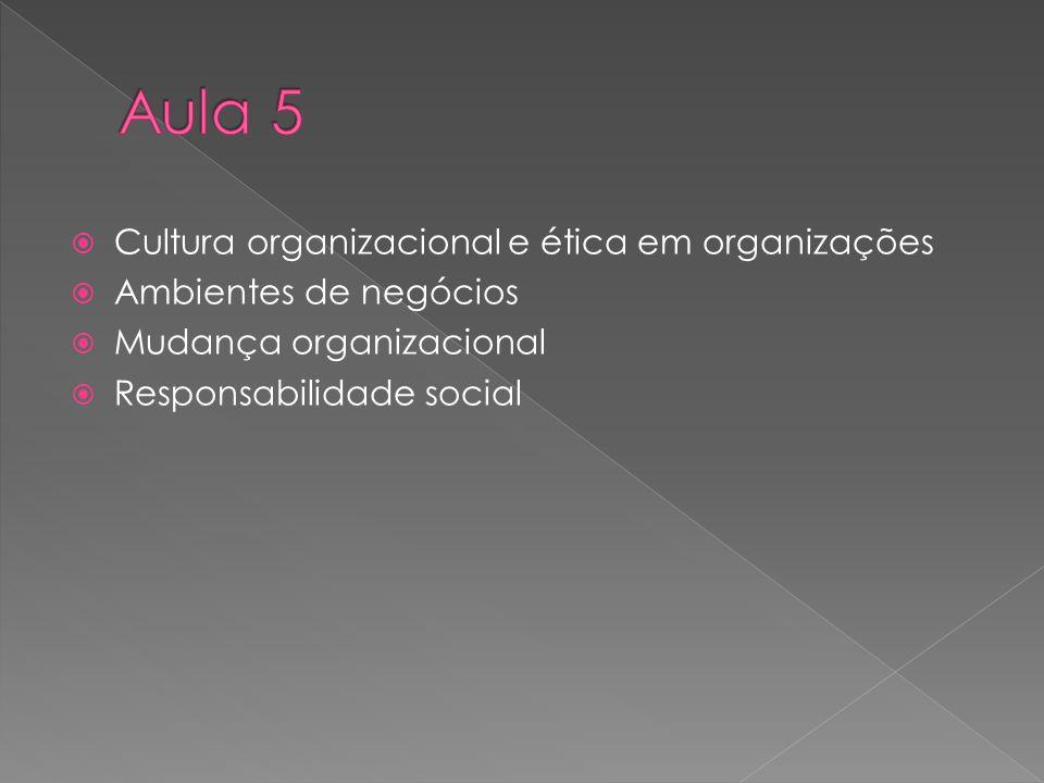 Aula 5 Cultura organizacional e ética em organizações