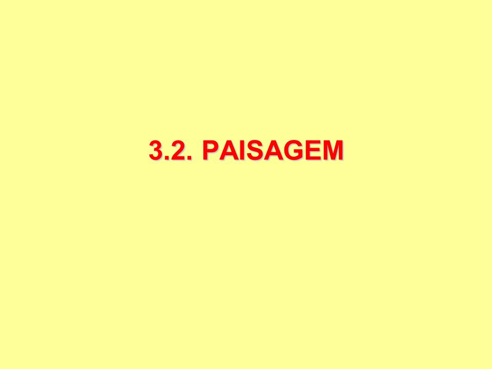 3.2. PAISAGEM
