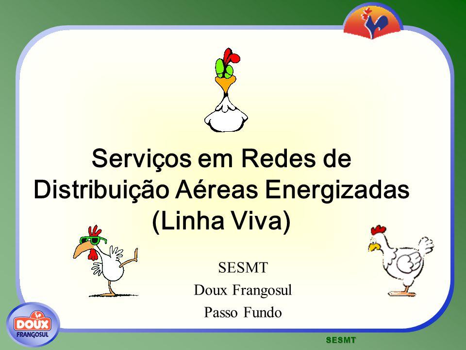 Serviços em Redes de Distribuição Aéreas Energizadas (Linha Viva)