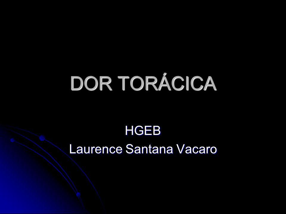 HGEB Laurence Santana Vacaro