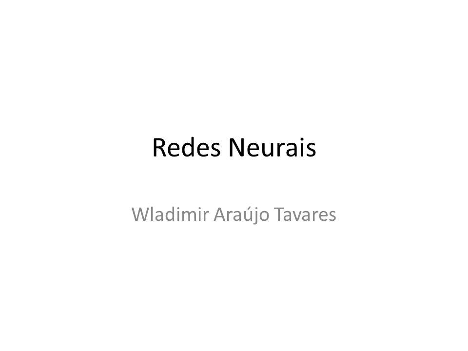 Wladimir Araújo Tavares