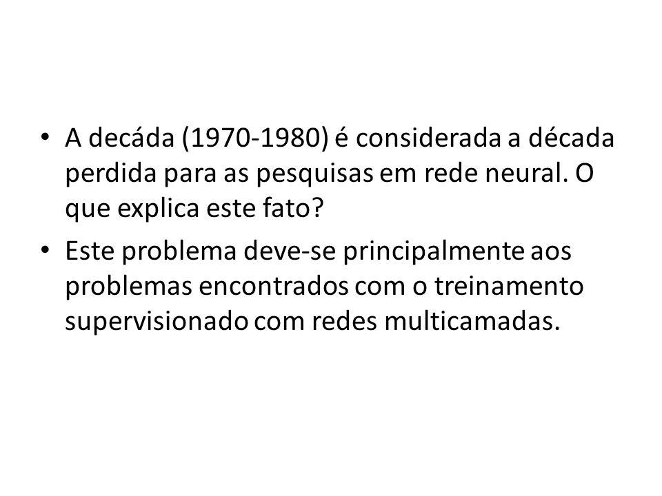 A decáda (1970-1980) é considerada a década perdida para as pesquisas em rede neural. O que explica este fato