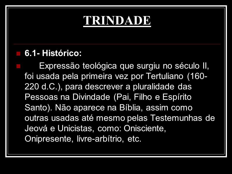 TRINDADE 6.1- Histórico:
