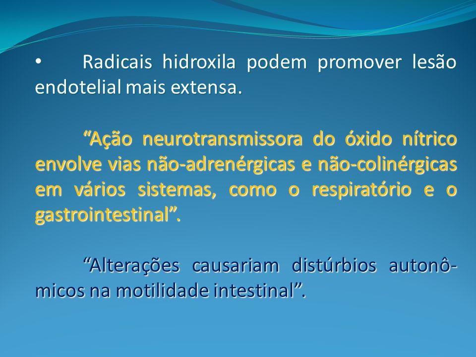 Radicais hidroxila podem promover lesão endotelial mais extensa.