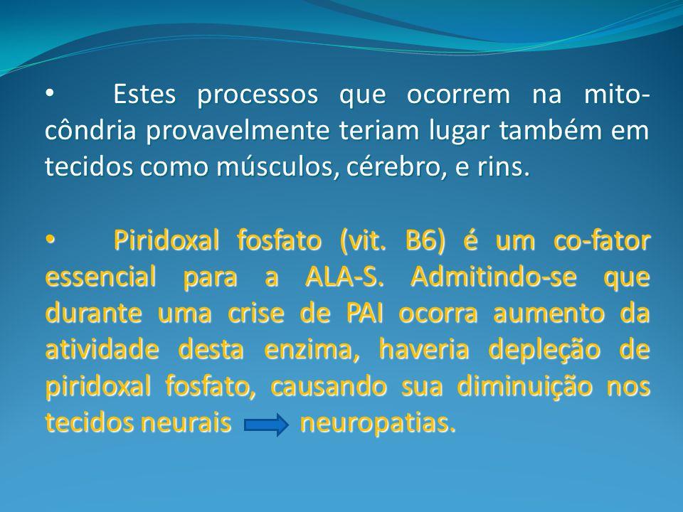 Estes processos que ocorrem na mito-côndria provavelmente teriam lugar também em tecidos como músculos, cérebro, e rins.