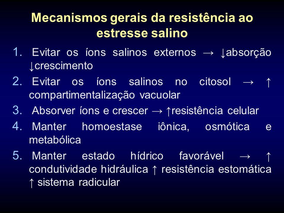 Mecanismos gerais da resistência ao estresse salino