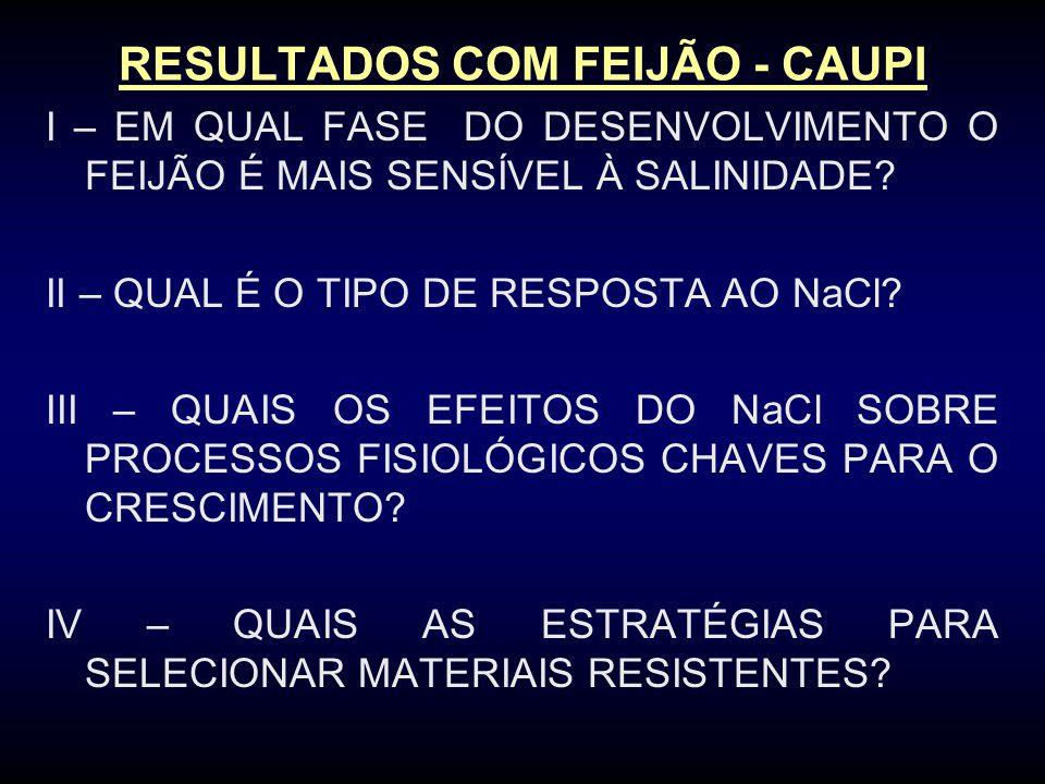 RESULTADOS COM FEIJÃO - CAUPI