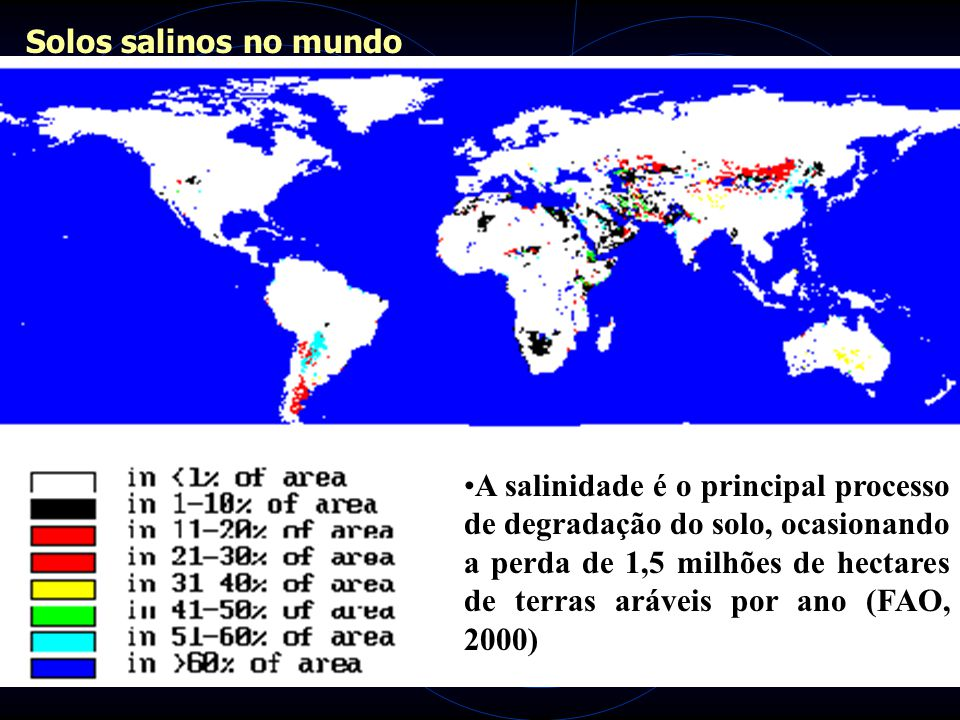 Solos salinos no mundo
