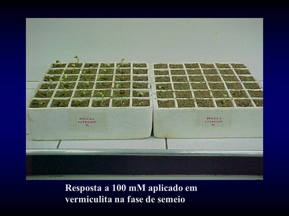 Resposta a 100 mM aplicado em vermiculita na fase de semeio