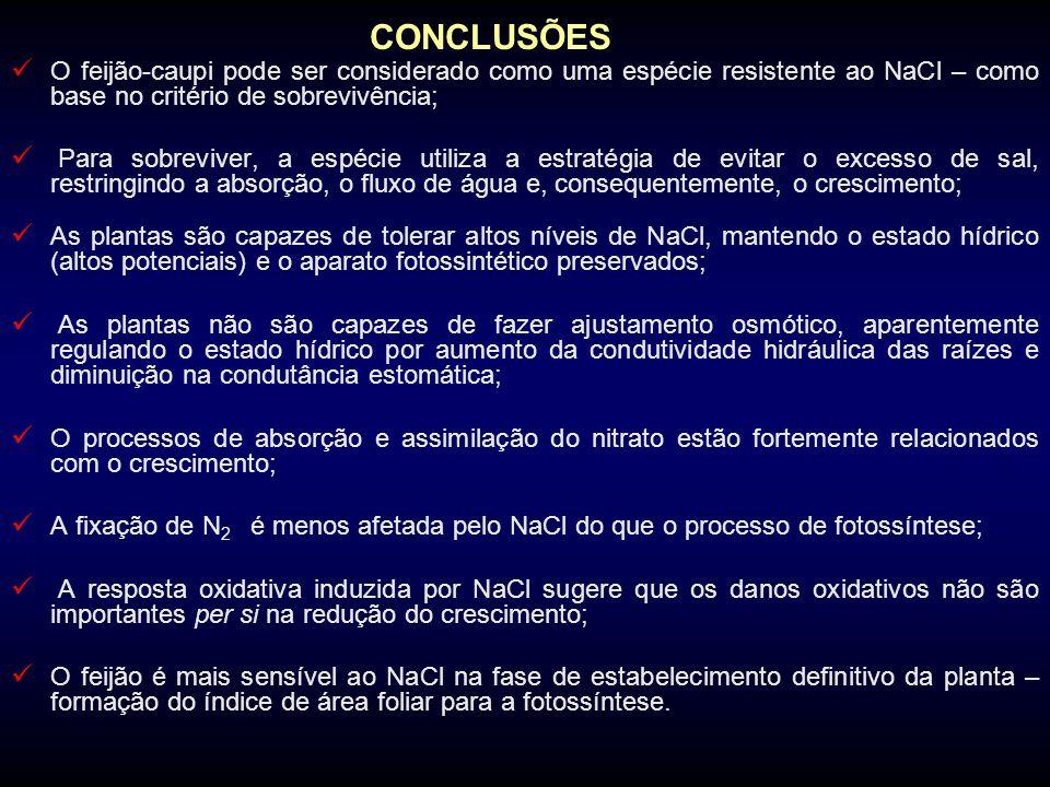 CONCLUSÕES O feijão-caupi pode ser considerado como uma espécie resistente ao NaCl – como base no critério de sobrevivência;