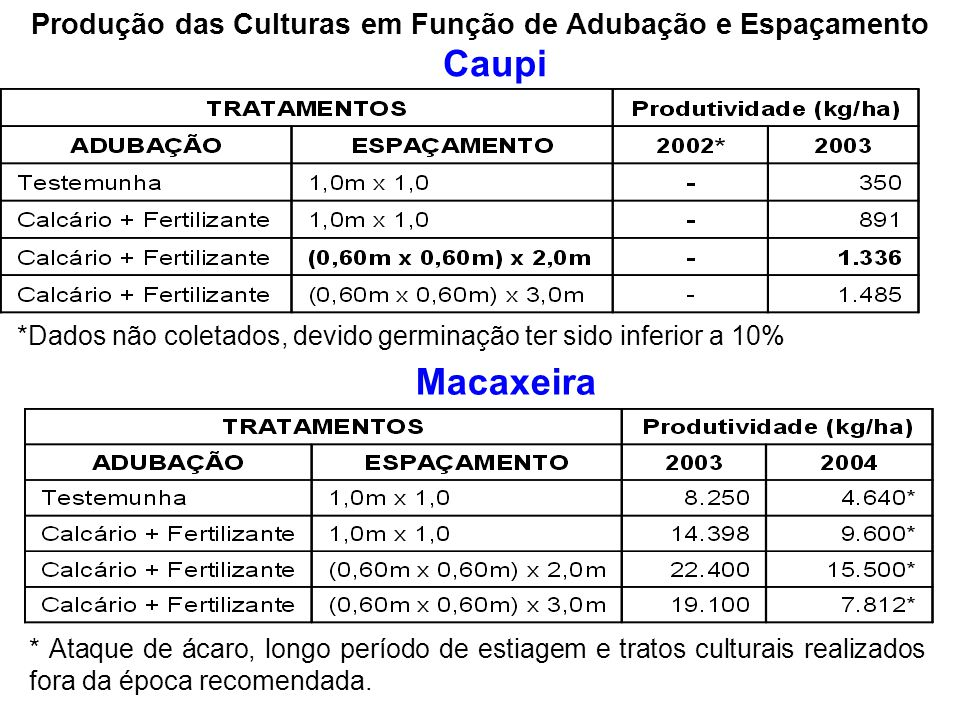 Produção das Culturas em Função de Adubação e Espaçamento