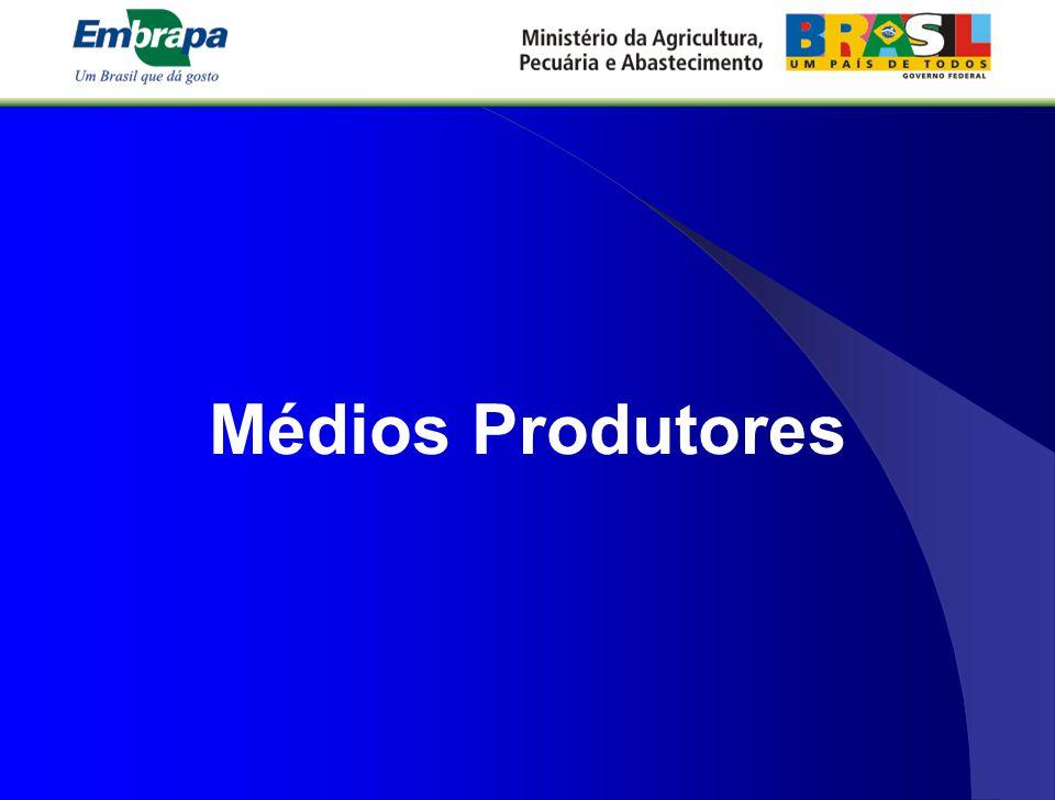 Médios Produtores