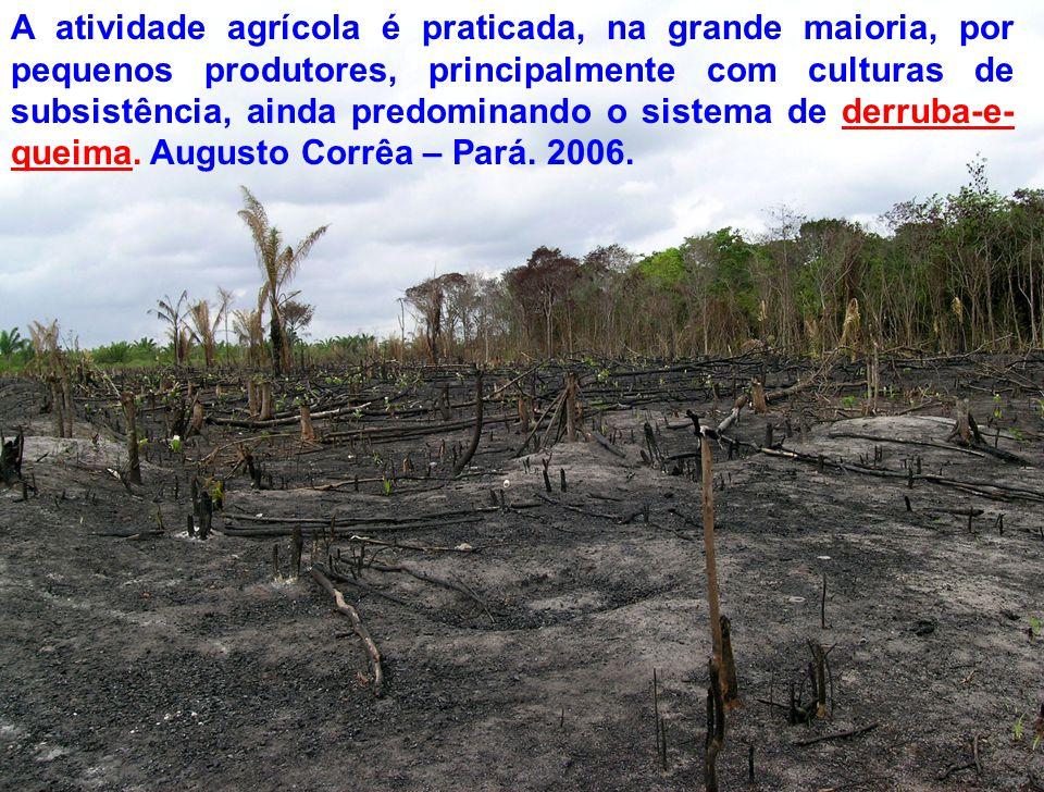A atividade agrícola é praticada, na grande maioria, por pequenos produtores, principalmente com culturas de subsistência, ainda predominando o sistema de derruba-e-queima.