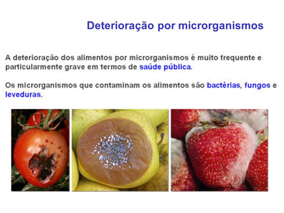 Deterioração por microrganismos