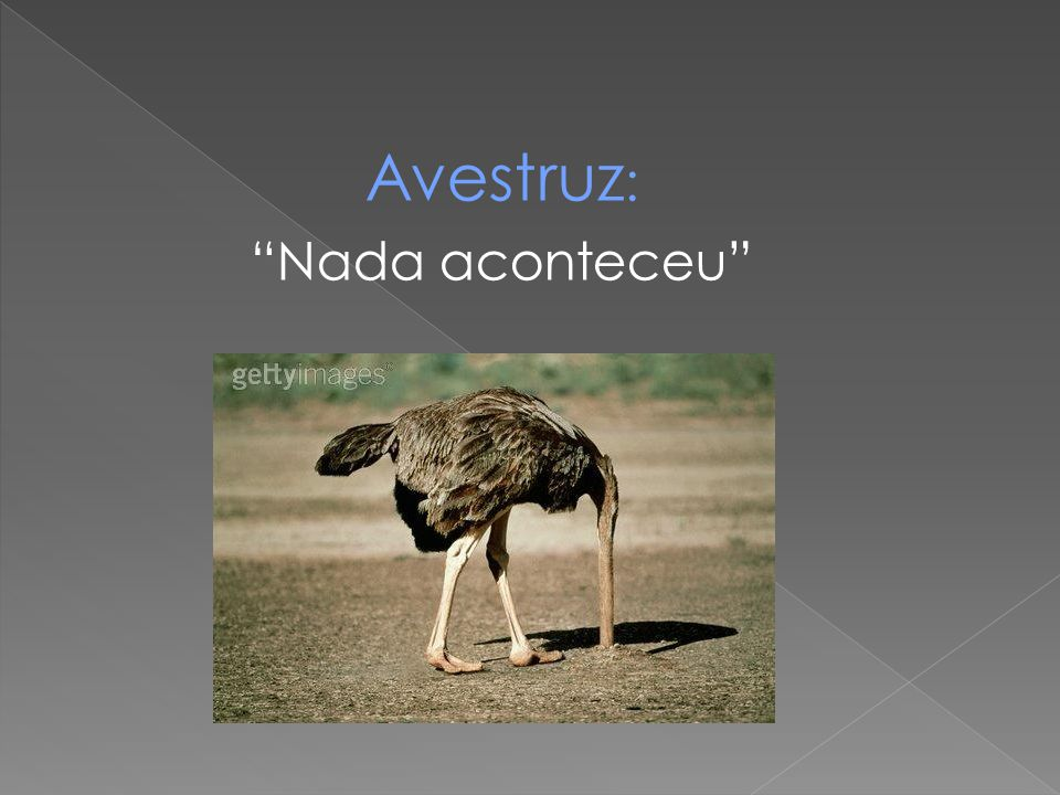 Avestruz: Nada aconteceu