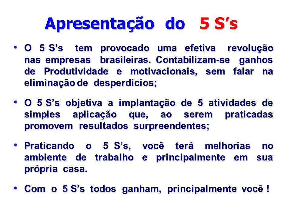 Apresentação do 5 S's