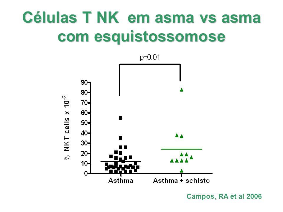 Células T NK em asma vs asma com esquistossomose