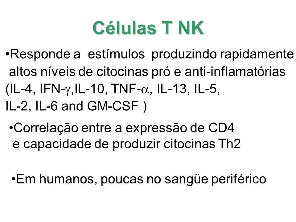 Células T NK Responde a estímulos produzindo rapidamente