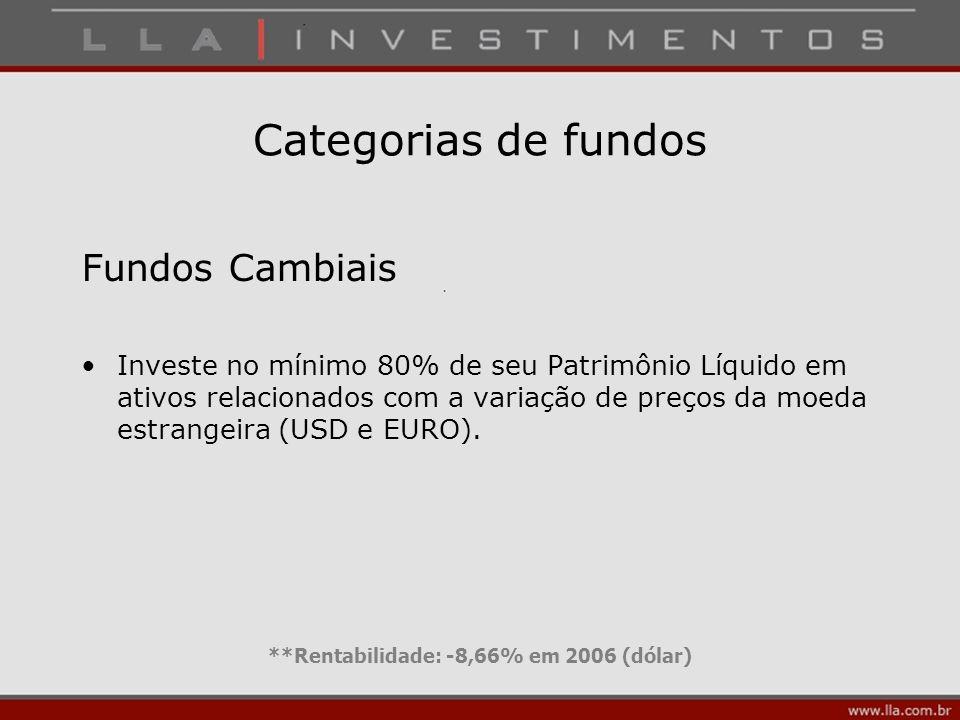 **Rentabilidade: -8,66% em 2006 (dólar)
